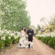 Jye and Sara, February 2015, Hobart, Tasmania, Cairns Civil Marriage Celebrant, Melanie Serafin